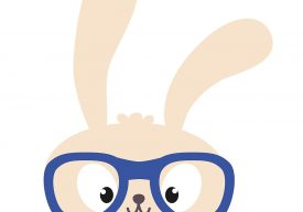 Bunny rabbit wearing eyeglasses illustration